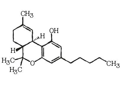 Chemische-Struktur-von-THC