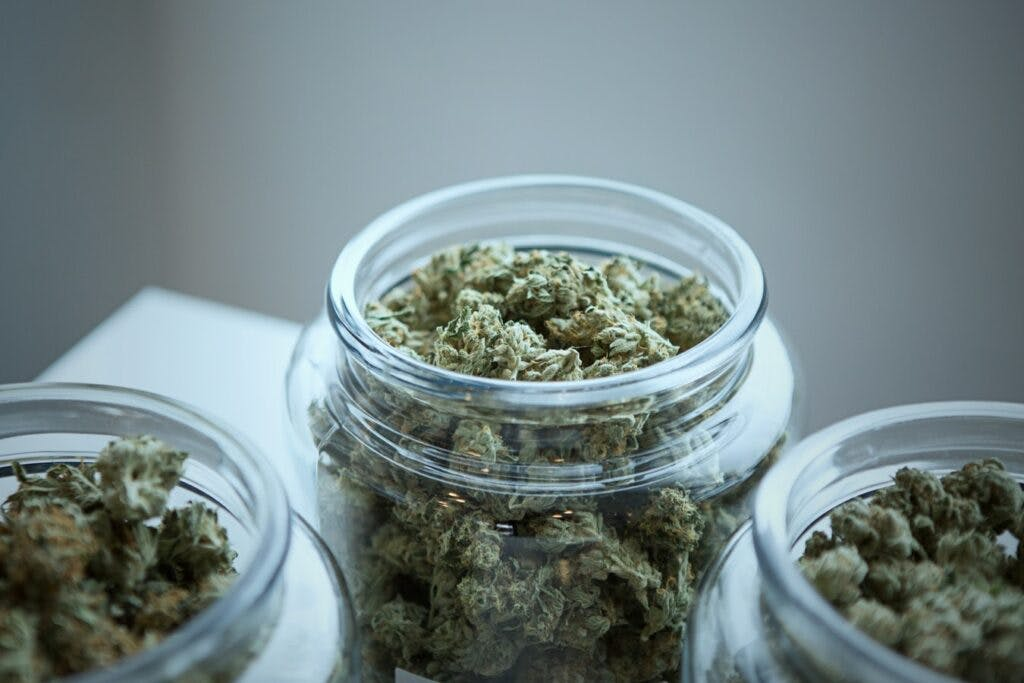 How to Store Dried Cannabis Properly