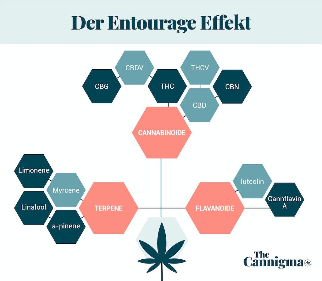 Entourage-Effekt