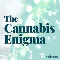 The Cannabis Enigma Podcast