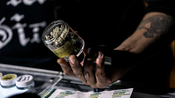 A budtender shows a jar of cannabis alongside a list of recommended uses. (Brandon Crawford)
