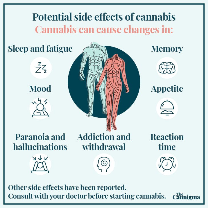 Cannabis side effects: fatigue, memory, appetite, reaction time, mood, paranoia, addiction