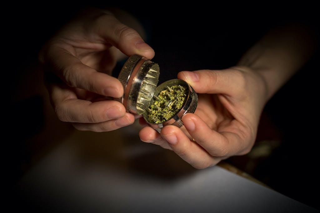 marijuana-grinder