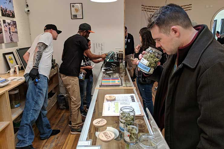Smelling cannabis in a dispensary