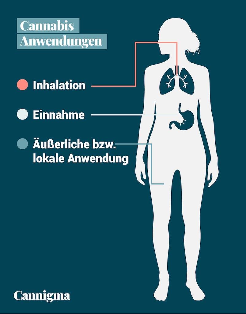 Anwendungsmethoden Cannabis