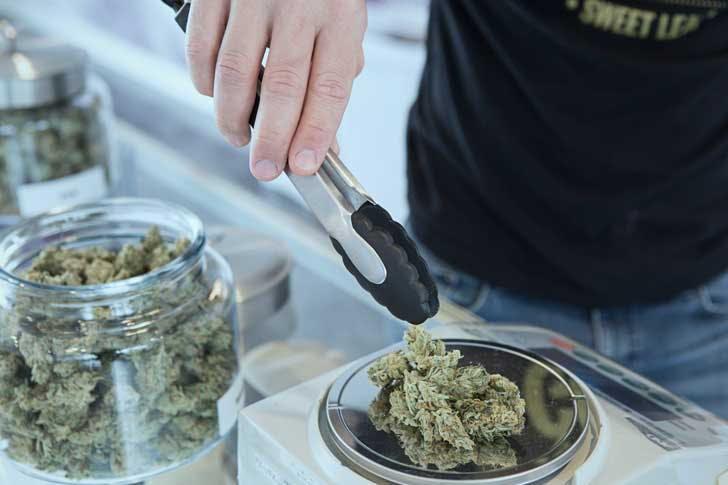 Weighing marijuana at a dispensary