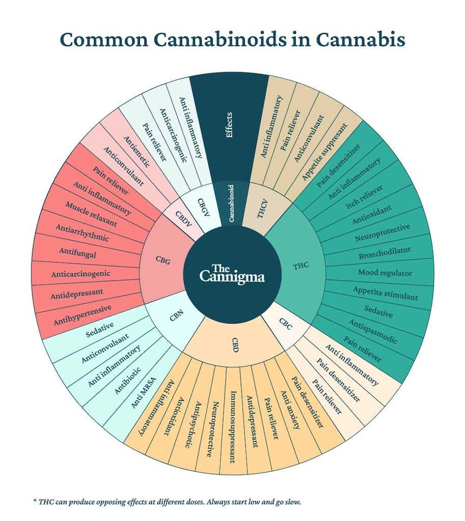 Common cannabinoids in cannabis