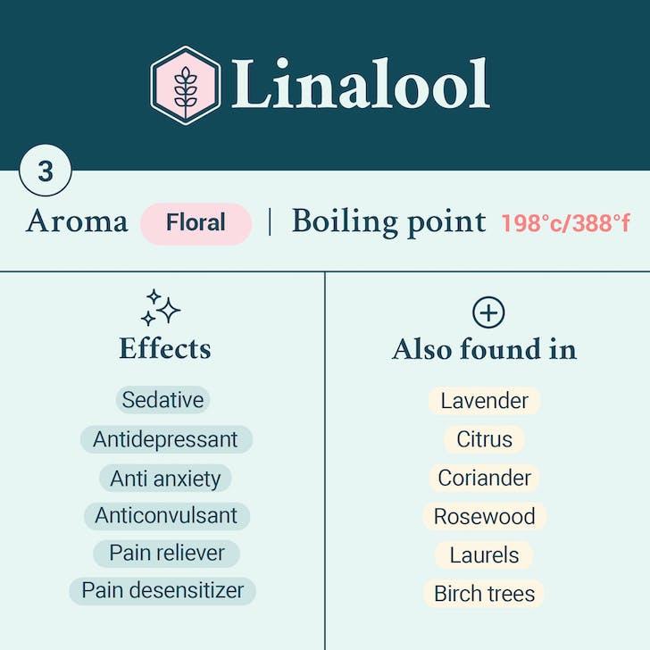 Linalool terpene card