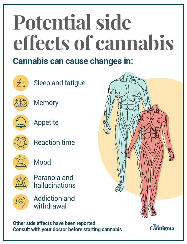 Potential Side Effects of Marijuana
