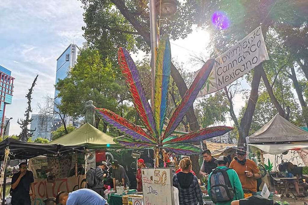 cannabis encampment outside the Mexican Senate building in Mexico City