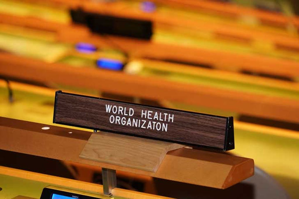 The World Health Organization at the United Nations