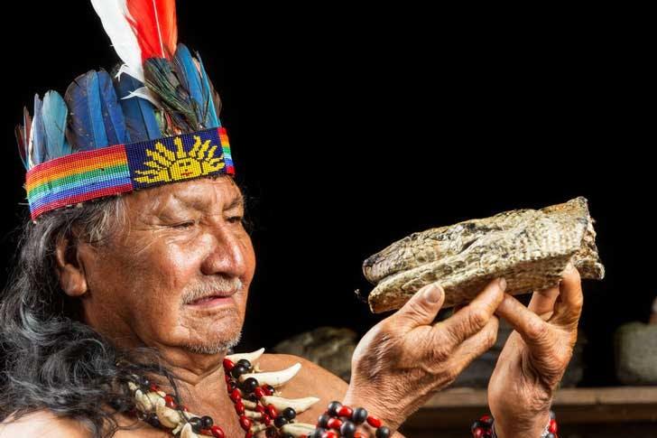 shaman ayahuasca ceremony