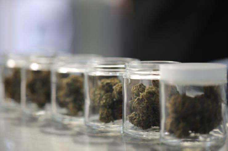 Yes, Cannabis Can Be Kosher, Says Rabbi Yaakov Cohen