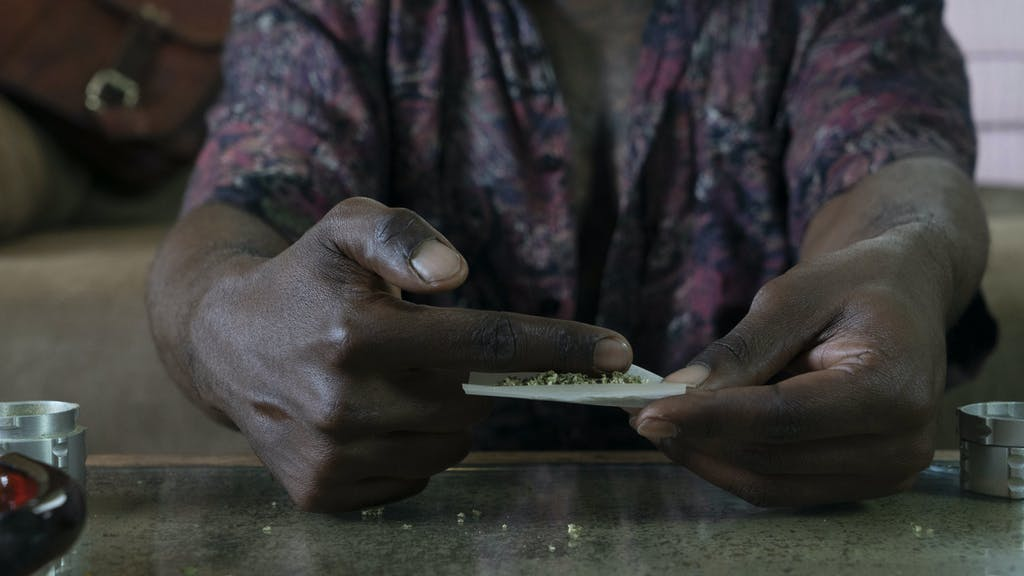 A cannabis é espalhada pela seda por um homem.