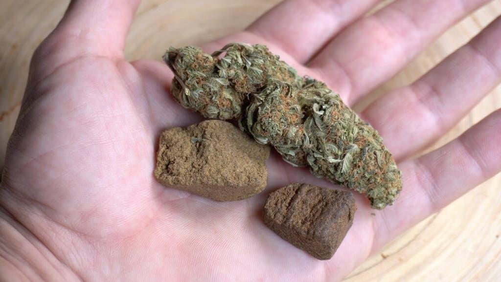 cannabis flower and hashish