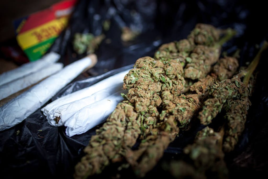 joints and flower jamaica