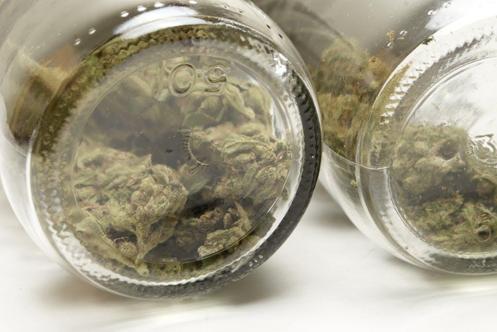 Cannabis in mason jars ahead of making a tincture