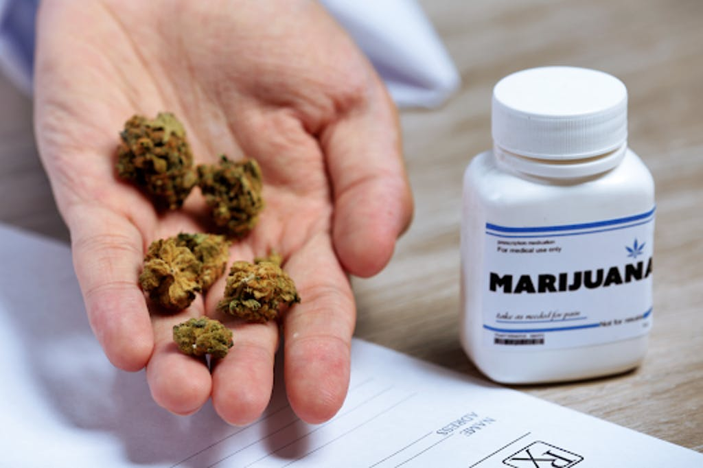 Misinformation regarding cannabis can also stifle its potential to help all types of cannabis consumers